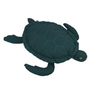 NUMERO 74 : Samy Turtle